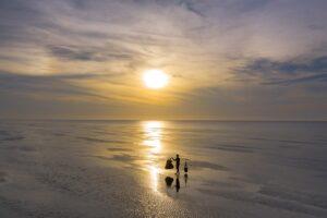 Sea Sunrise Ocean Sunset Beach - dangquangn / Pixabay