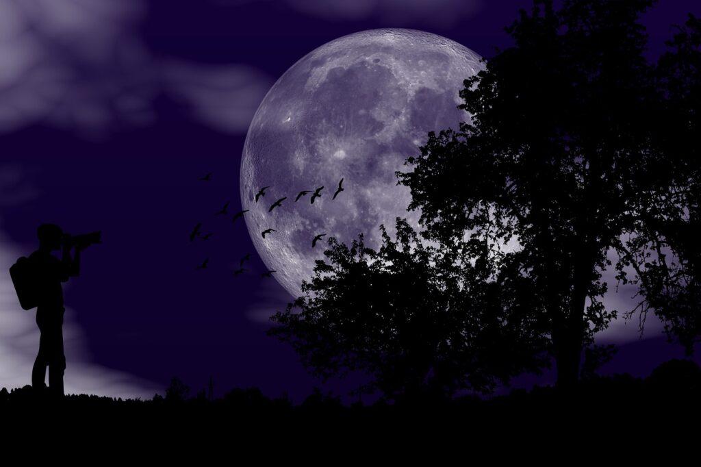Night Moon Photographer Full Moon - susan-lu4esm / Pixabay